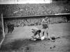 Suecia llegó a la final de su Mundial, en un campeonato que supuso la primera participación de la URSS. A la cita faltaron poderosas selecciones como España e Italia.