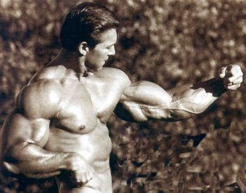 Larry Scott wore these arms in the 60's.